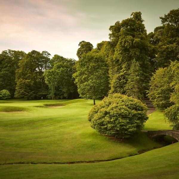 golfblog1