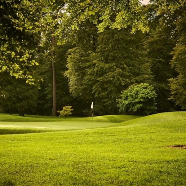 golfblog2