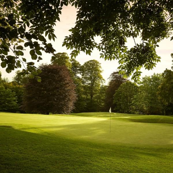 golfblog3